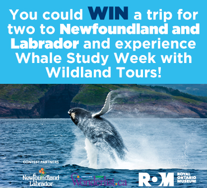 Trip to Newfoundland and Labrador Contest
